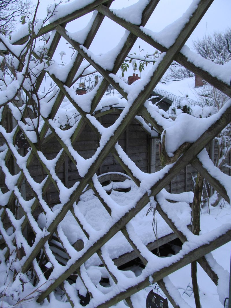 Snowy weekend jan 2013 018