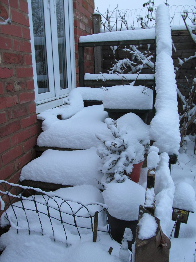 Snowy weekend jan 2013 013